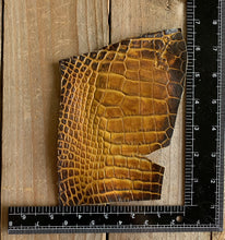 Smoked Gold | Hand-dyed Alligator Skin Panel | Leg Piece