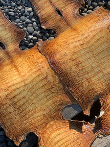 Reserved for J. A. W. | Two Hand-dyed American Alligator Skins | Final Payment