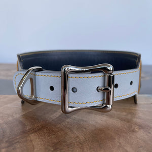 Pantone 2021 | American Alligator Leather Art Panel Dog Collar | 14-17""