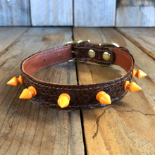 Brown | Spiked Python Skin Dog Collar with Kangaroo Leather Lining