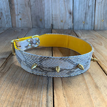 Gold Sparkle | Spiked Python Skin Dog Collar with Kangaroo Leather Lining