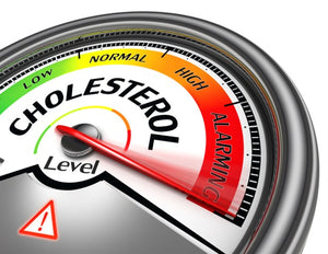 Cholesterol lowering drugs can improve composition of gut bacteria in obese individuals
