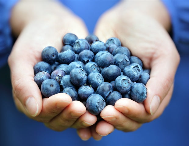 High intake of dietary flavonols tied to lower risk of Alzheimer's dementia