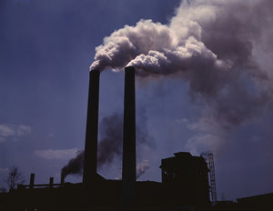 Antioxidants may mitigate the damaging effects of pollution on human health