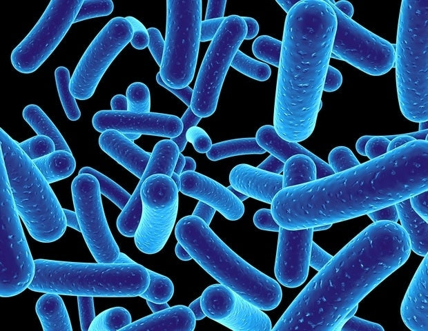 Gut bacteria could protect against Parkinson's, research suggests