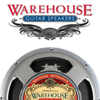 WGS Guitar Speakers