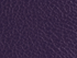 products/Purple_Bronco_Levant_Tolex.png