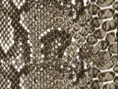Snakeskin Tolex - The Speaker Factory