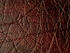 products/Wine_Taurus_Tolex.png