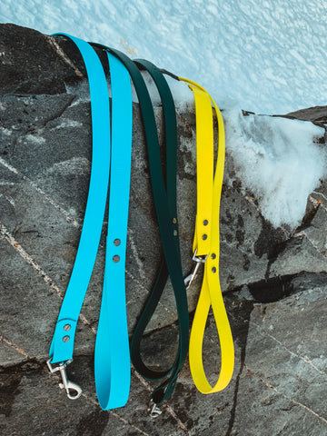 Black Spruce Leash