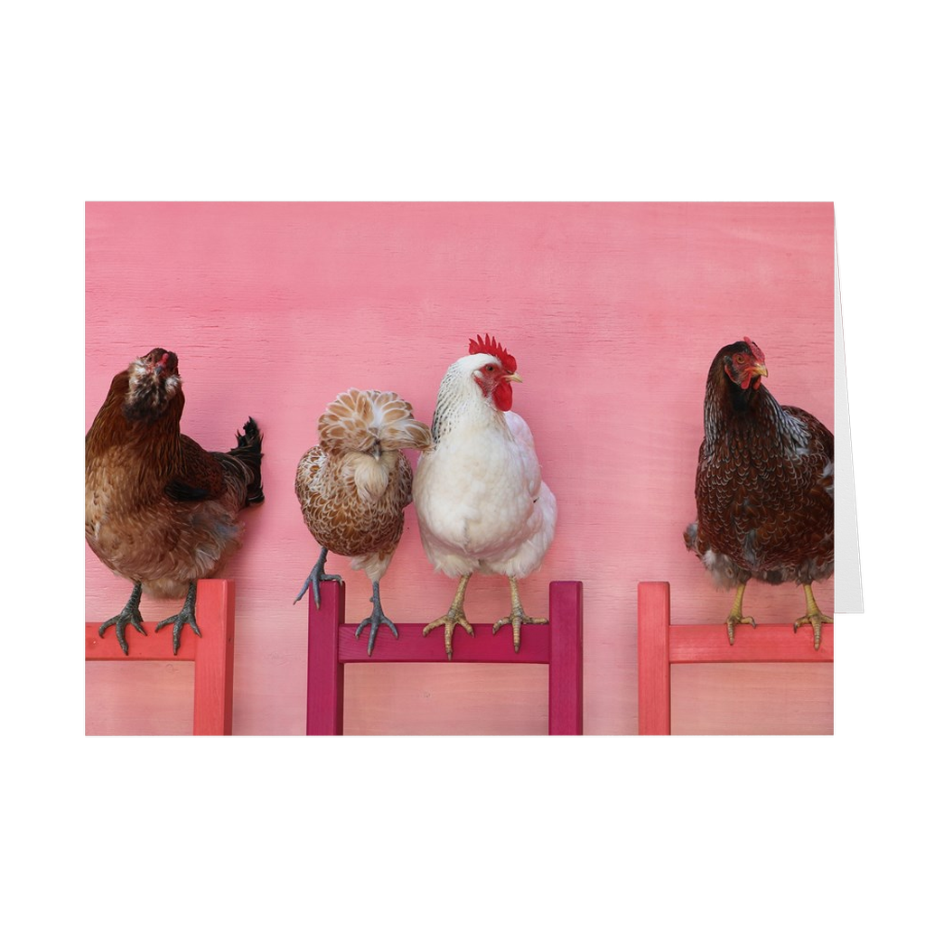Chickens on Chairs Folded Notecards