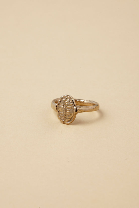 FÓSIL ring in Bronze