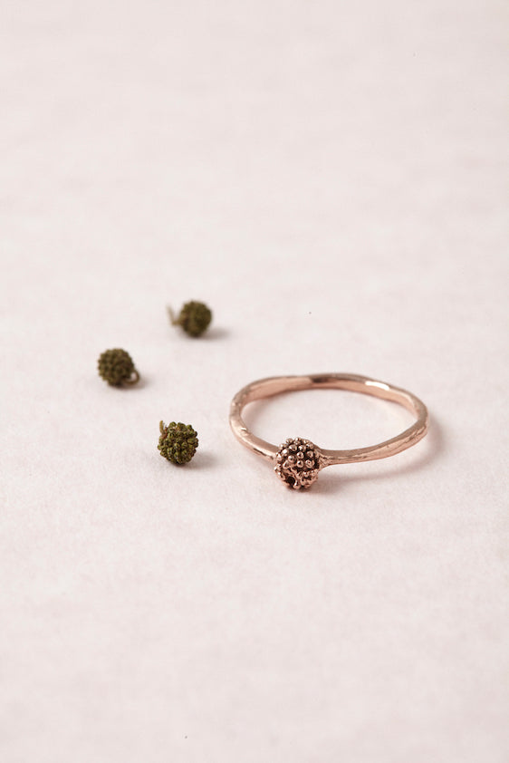 ORIGEN Seedling Ring in Bronze