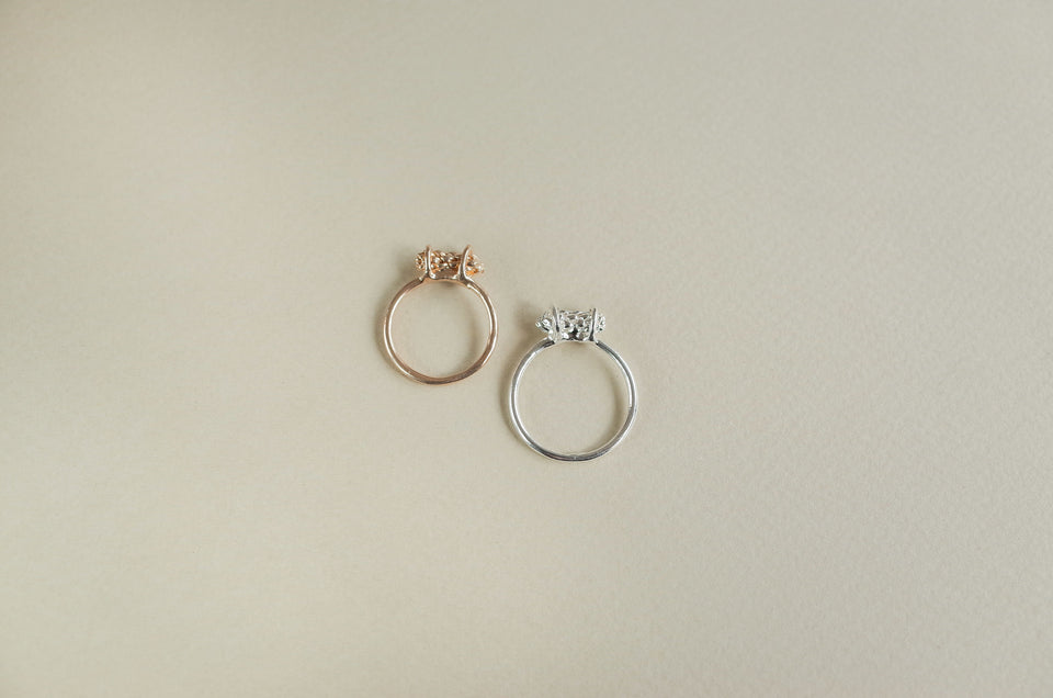 Capsule Ring in Bronze or Silver