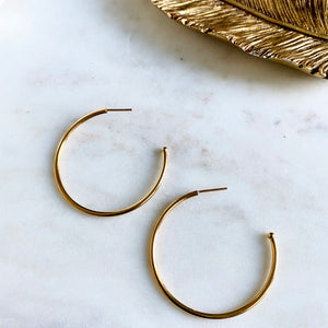 18K Gold Filled Thin Hoops