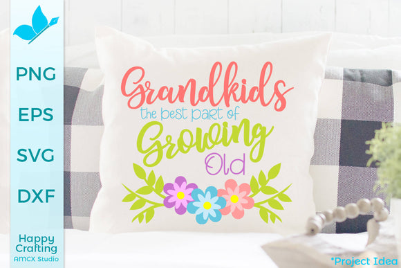 Grandkids is the best part of growing old