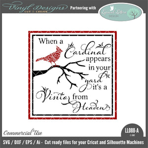 Cardinals Appear with Patterned Cardinal