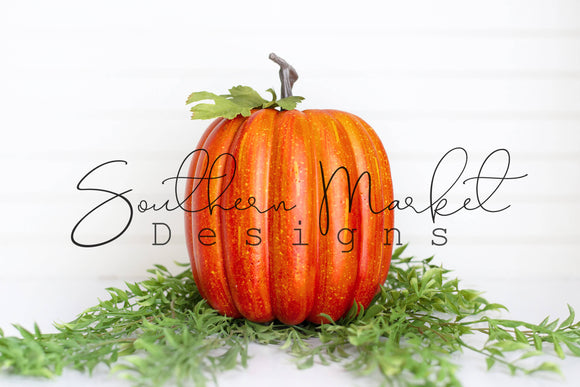 BLANK PUMPKIN FOR DECALS DIGITAL MOCK UP STOCK PHOTOGRAPHY