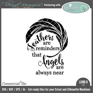 Feathers Are Reminders That Angels Are Near