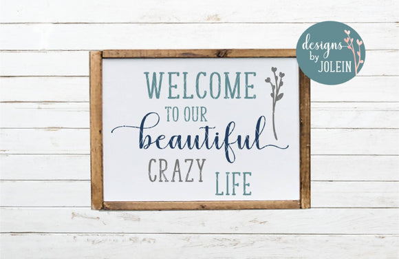 Welcome to our beautiful, crazy life