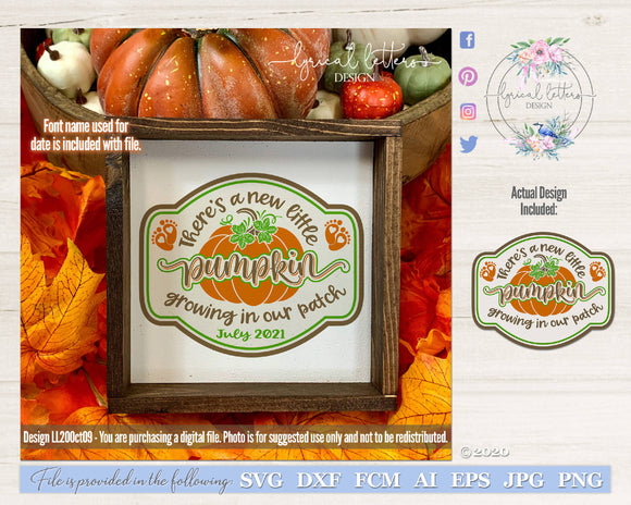 New Little Pumpkin Pregnancy Announcement SVG Cut File LL20Oct09