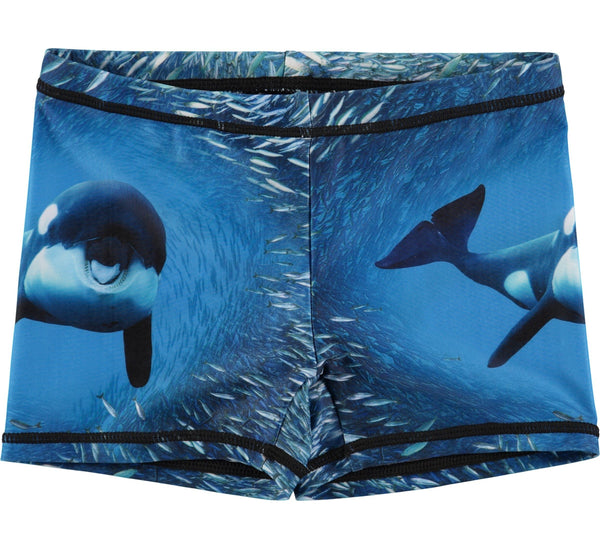 Norton placed - Orca-SWIMWEAR-MOLO-86/92 - 18mths-2 YRS-jellyfishkids.com.cy