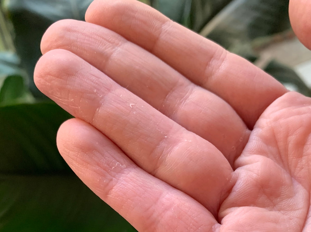 The reason why your hands are dry from washing and sanitising!