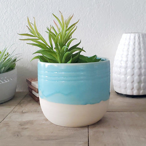 Atlantis Aqua House Planter