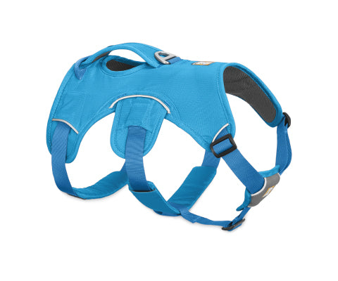 Web Master Harness - Blue Dusk