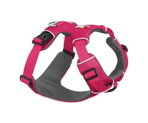 Front Range Harness - Wild Berry