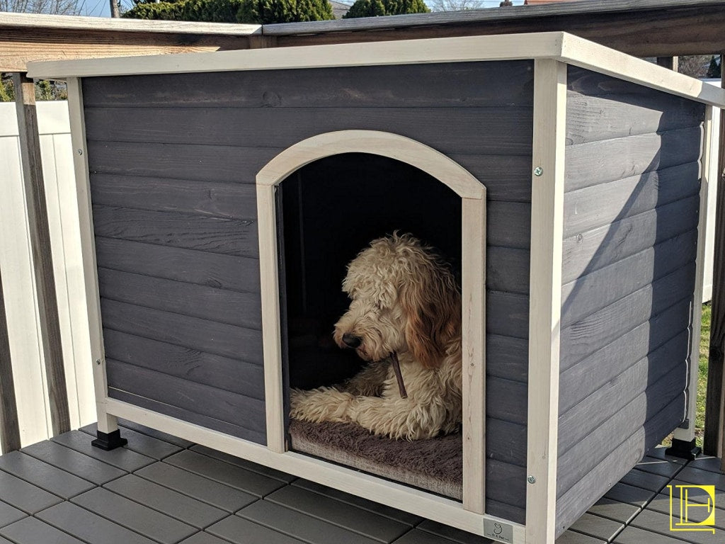 A4Pet Outdoor Dog House Weather Protected Raised Easy To Clean Small Medium Large Size Available S
