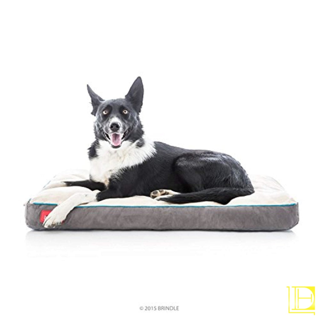 Memory Foam Dog Bed W/ Removable Washable Cover 17In X 11In / Khaki