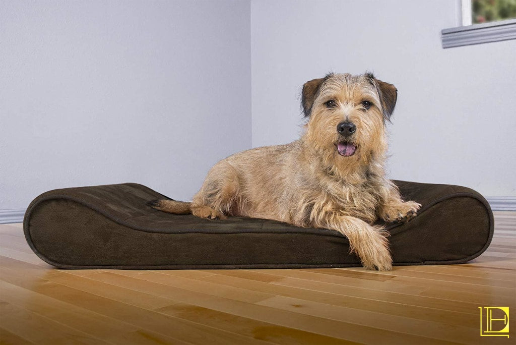 Orthopedic Luxe Lounger Dog Bed (Available In 9 Colors)