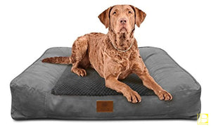 Plush Grey Memory Foam Sofa-Style Dog Bed