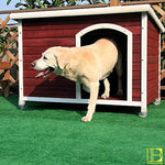 Red & White Wooden Outdoor Dog House