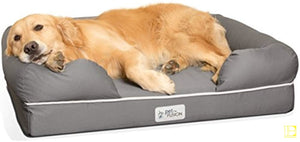 Slate Grey Cozy Memory Foam Dog Bed Small Gray (25X20)