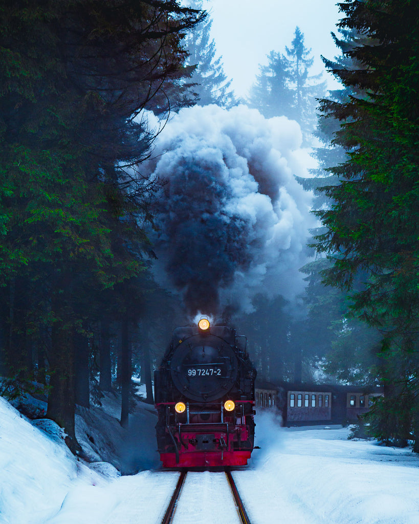 Harz National Park, Germany