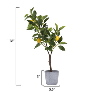 "28""H Potted Faux Lemon Tree in Cement Pot"