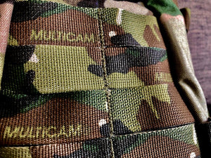 Hitchhikers Mosquito (Multicam)