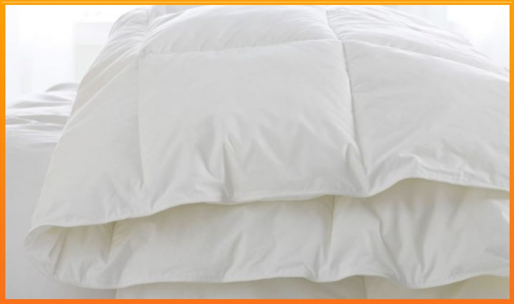 discover the best goose down comforters