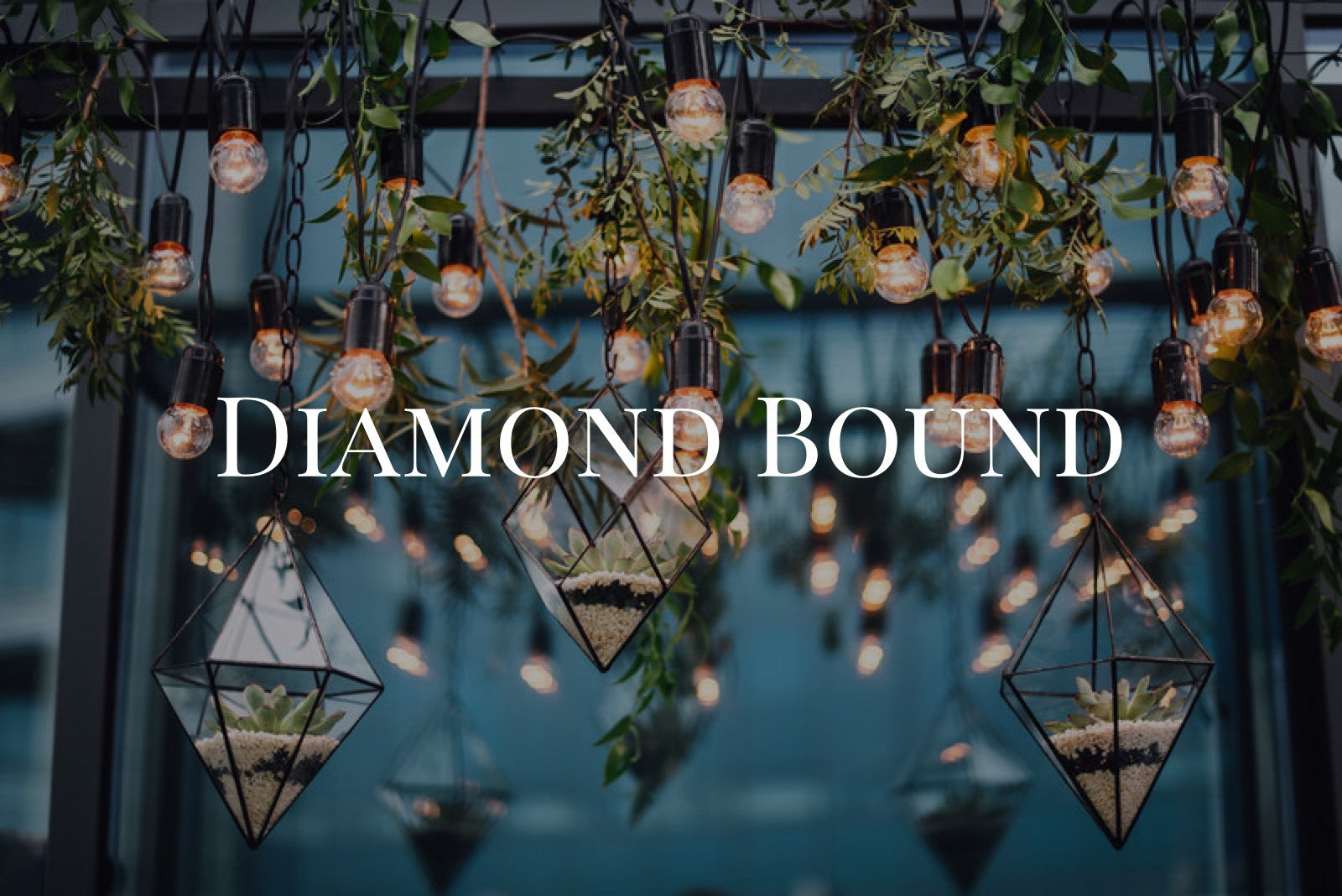 Diamond Bound VIP Ticket - 3 Month Payment Plan