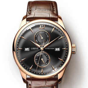 Watch Men Seagull Automatic Mechanical Movement Switzerland Brand Men's Watches Sapphire Waterproof