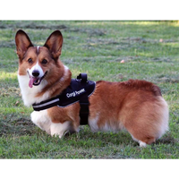 BrilliantK9 Ergonomic Dog Harness Lucy Medium