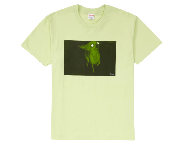 Supreme Chris Cunningham Chihuahua Tee Pale Mint (Size LARGE)