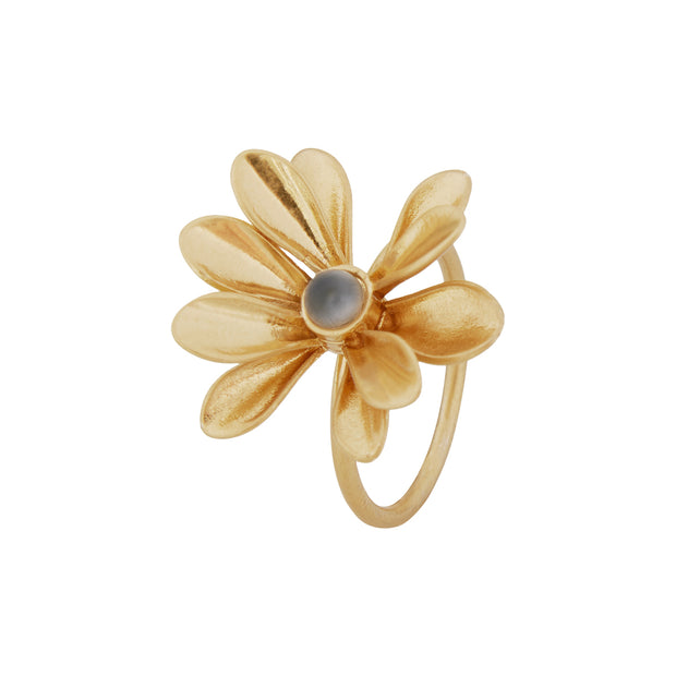 Couture Sweet Daisies Grey Agate Ring in Gold
