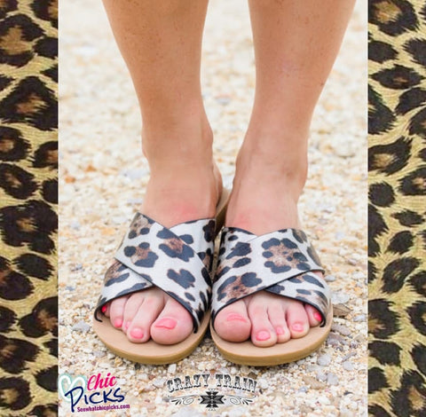 "Crazy Train Silver Leopard Print Summer Slide Sandals-""Slide Wild Way""-Front Promo-Chic Picks"