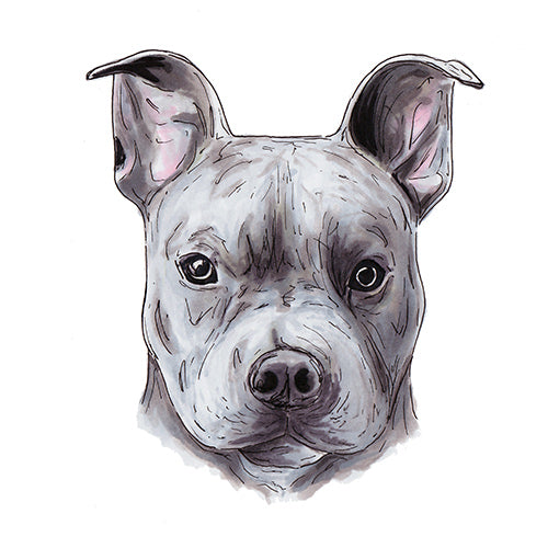 Custom illustrated pet portrait drawing of a dog by JesMarried