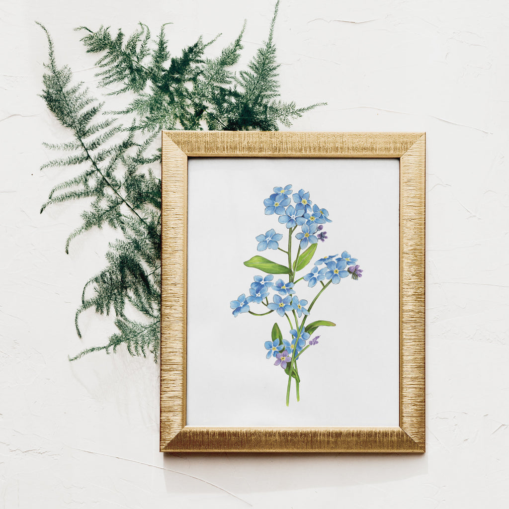 Forget Me Not Flower Art Print