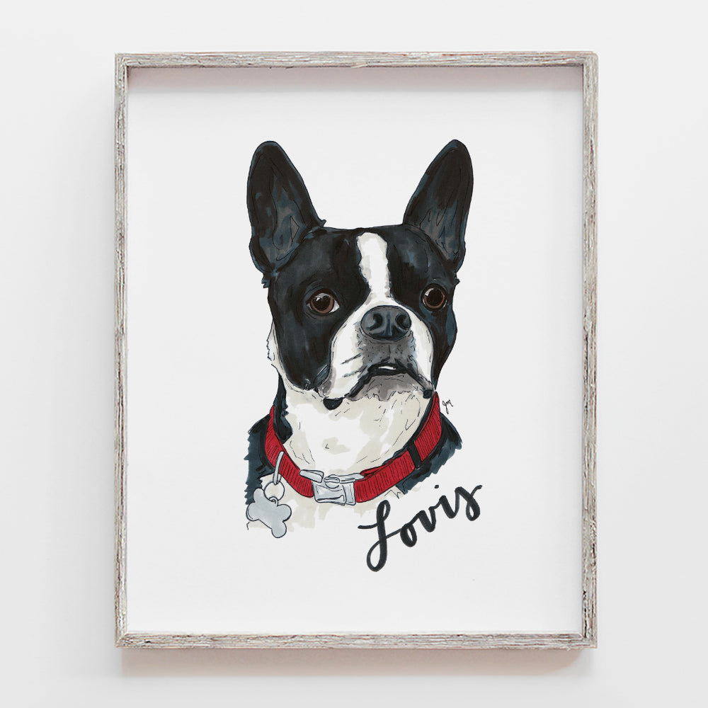 Custom pet portrait drawing of dog. This is a french bull dog illustration by JesMarried.