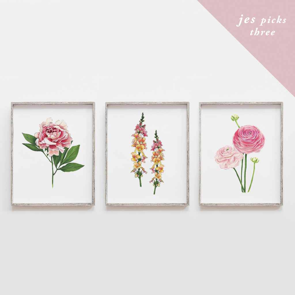 Hand-picked by Jes - Set of Three Art Prints (Mystery)